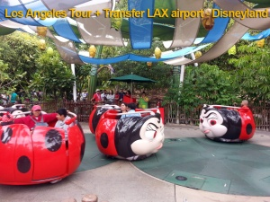 Disneyland Tour Los Angeles